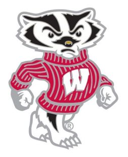 Wisconsin Badgers Bucky Badger Lapel Pin