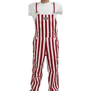 Wisconsin Badgers Game Bibs Overalls