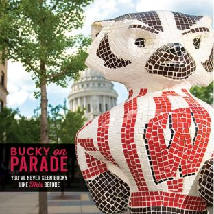Wisconsin Badgers Bucky On Parade Book