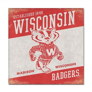 Wisconsin Badgers 14 x 14 Canvas Wall Art