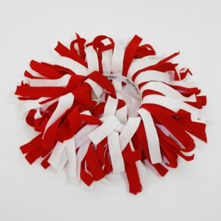 Wisconsin Badgers Red & White Pomchie