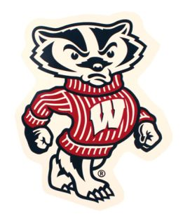 Wisconsin Small Bucky Car Magnet