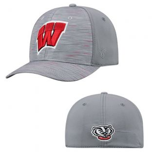 Wisconsin Badgers Top of the World Gray Hyper One-Fit Hat